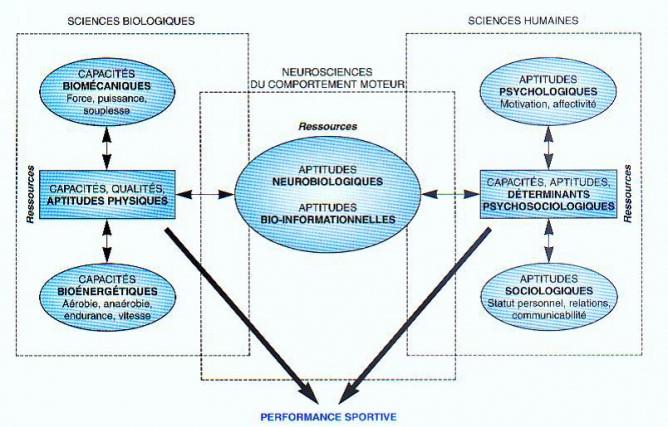 Modélisation des moyens utilisés par un sujet dans la réalisation d'une performance sportive (Penot, 1991, adapté)